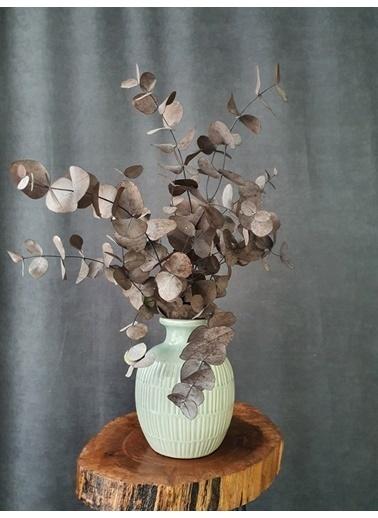 Kuru Çiçek Deposu Kuru Çiçek Şoklanmış Okaliptus Demeti Karışık Renk (50 Cm) Kırmızı